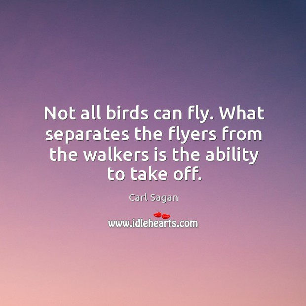 Image, Not all birds can fly. What separates the flyers from the walkers