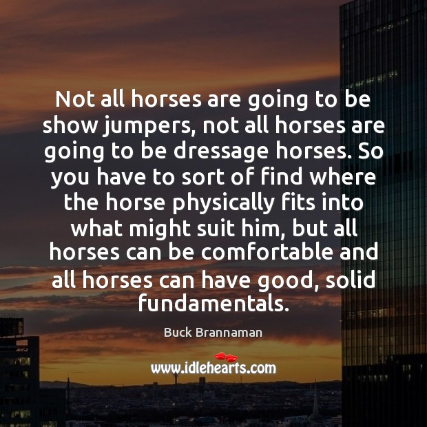 Image, Not all horses are going to be show jumpers, not all horses