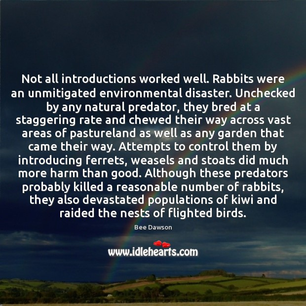 Image, Not all introductions worked well. Rabbits were an unmitigated environmental disaster. Unchecked