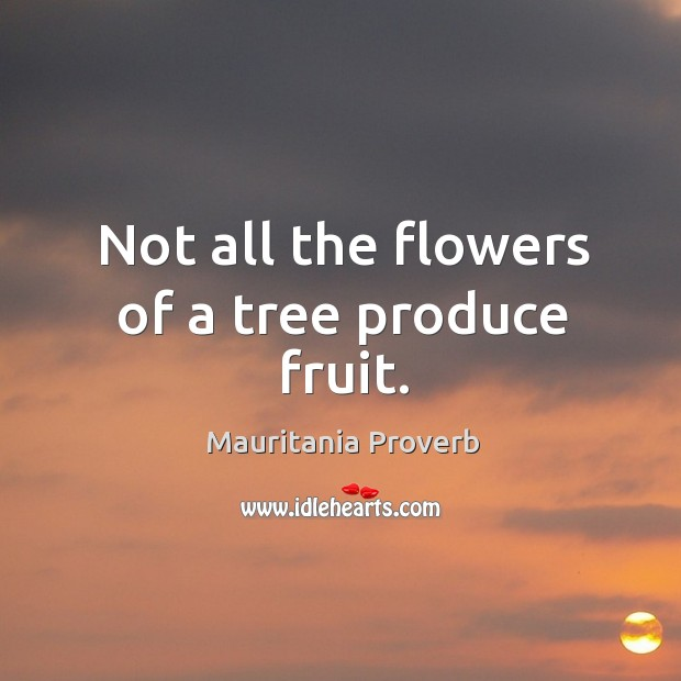 Not all the flowers of a tree produce fruit. Mauritania Proverbs Image