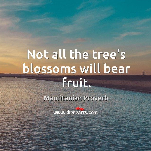 Not all the tree's blossoms will bear fruit. Mauritanian Proverbs Image