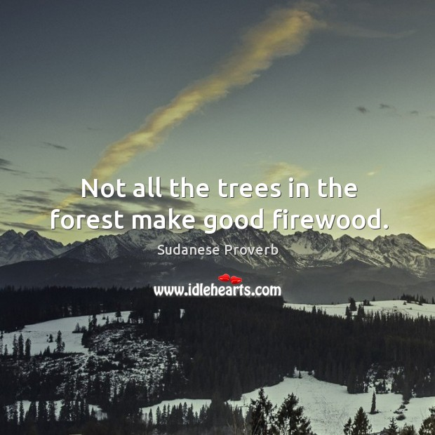 Not all the trees in the forest make good firewood. Sudanese Proverbs Image