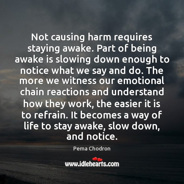 Image, Not causing harm requires staying awake. Part of being awake is slowing