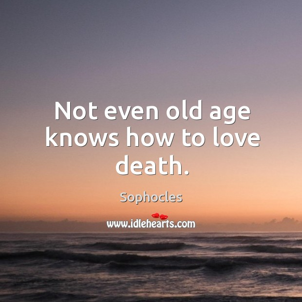 Image, Not even old age knows how to love death.