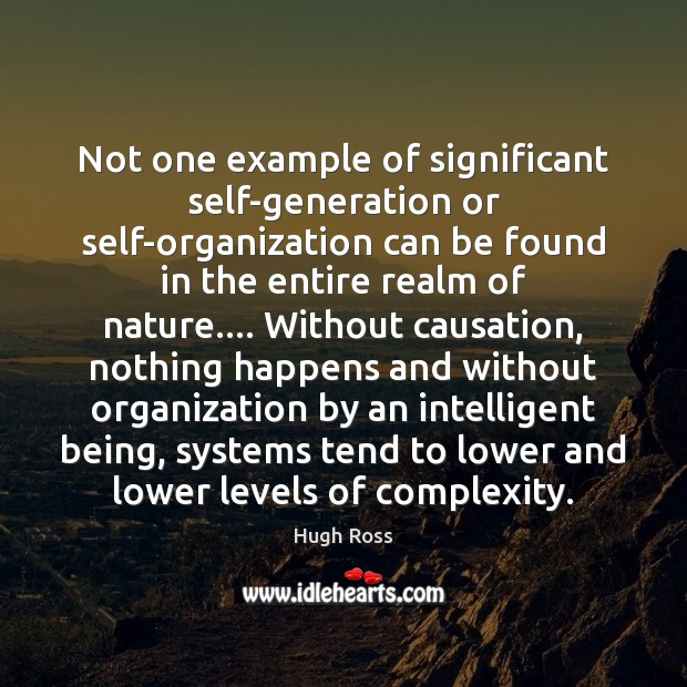 Not one example of significant self-generation or self-organization can be found in Image