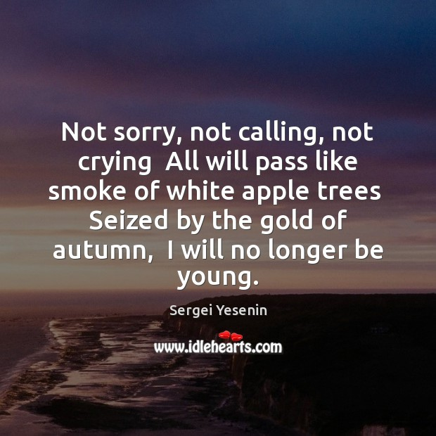 Image, Not sorry, not calling, not crying  All will pass like smoke of