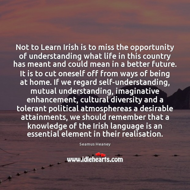 Not to Learn Irish is to miss the opportunity of understanding what Seamus Heaney Picture Quote