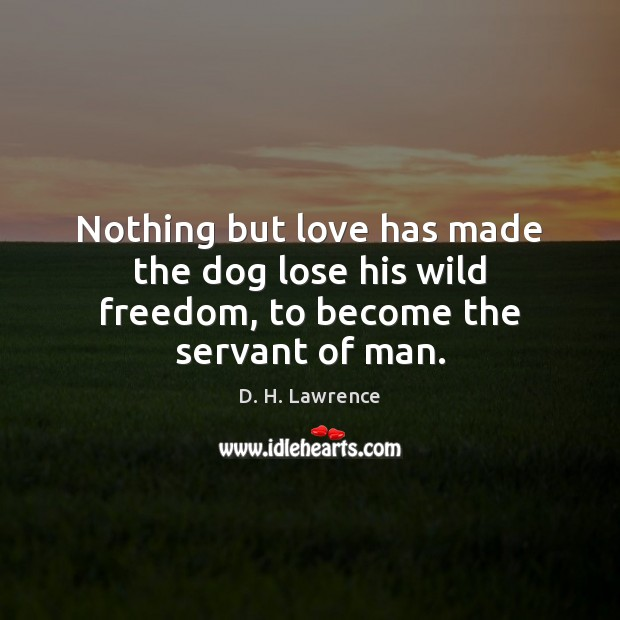 Nothing but love has made the dog lose his wild freedom, to become the servant of man. Image