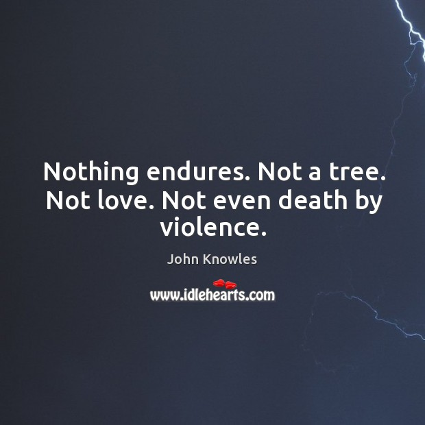 Nothing endures. Not a tree. Not love. Not even death by violence. Image