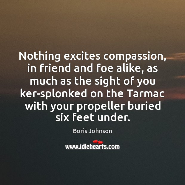 Nothing excites compassion, in friend and foe alike, as much as the Image