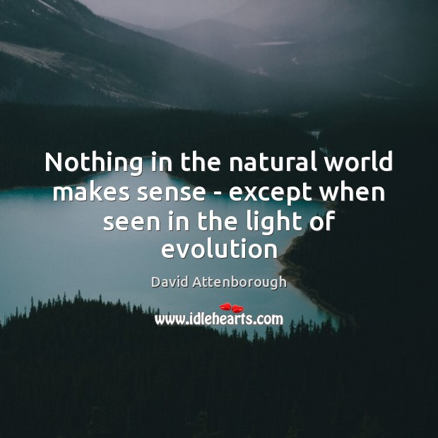 Image, Nothing in the natural world makes sense – except when seen in the light of evolution