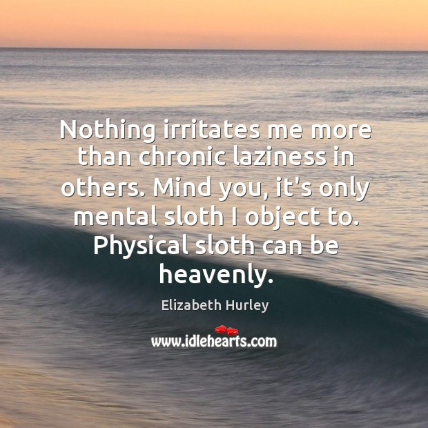 Nothing irritates me more than chronic laziness in others. Mind you, it's Elizabeth Hurley Picture Quote