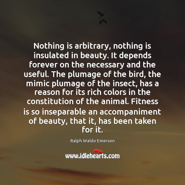 Image, Nothing is arbitrary, nothing is insulated in beauty. It depends forever on