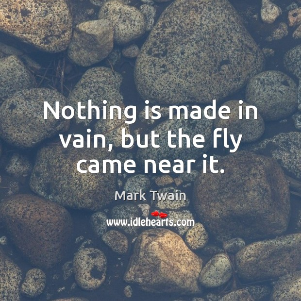 Nothing is made in vain, but the fly came near it. Image