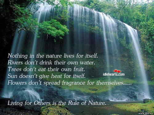 Living for others is the rule of nature Image