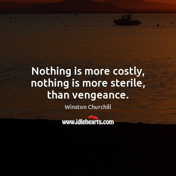 Nothing is more costly, nothing is more sterile, than vengeance. Image