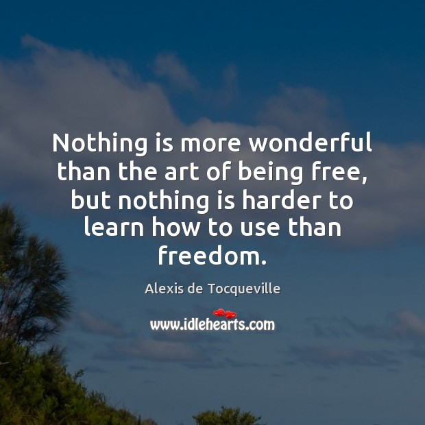 Nothing is more wonderful than the art of being free, but nothing Image