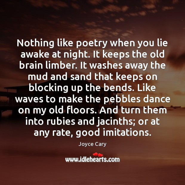 Nothing like poetry when you lie awake at night. It keeps the Lie Quotes Image