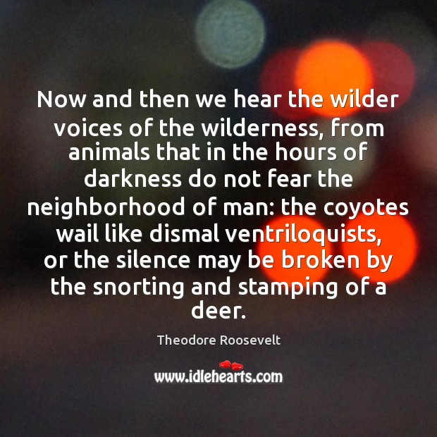 Now and then we hear the wilder voices of the wilderness, from Image