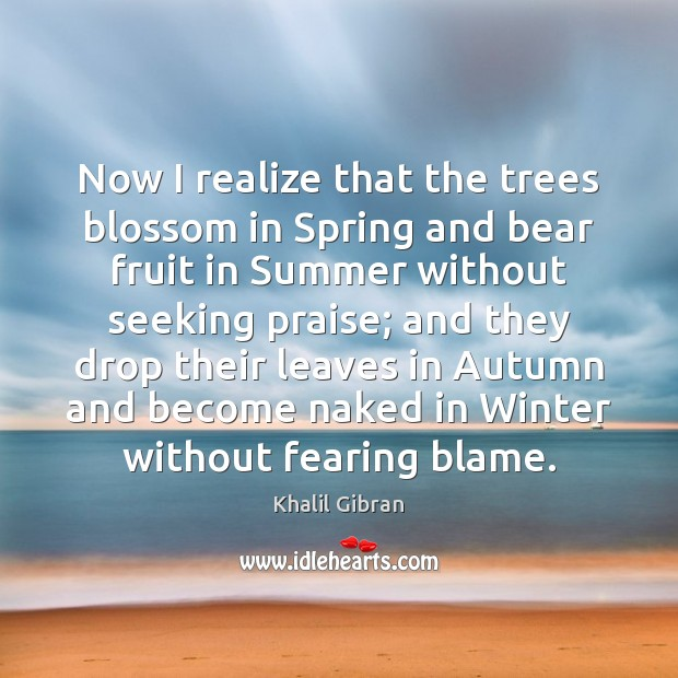 Now I realize that the trees blossom in Spring and bear fruit Image