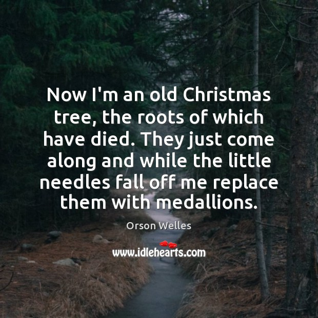 Now I'm an old Christmas tree, the roots of which have died. Image