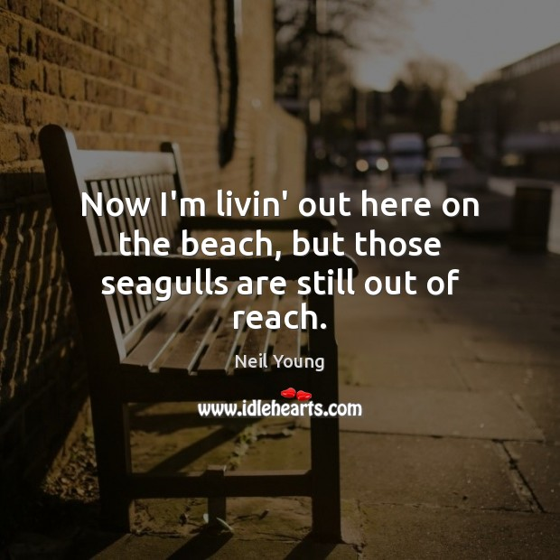 Now I'm livin' out here on the beach, but those seagulls are still out of reach. Neil Young Picture Quote