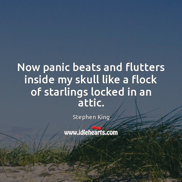 Now panic beats and flutters inside my skull like a flock of starlings locked in an attic. Image