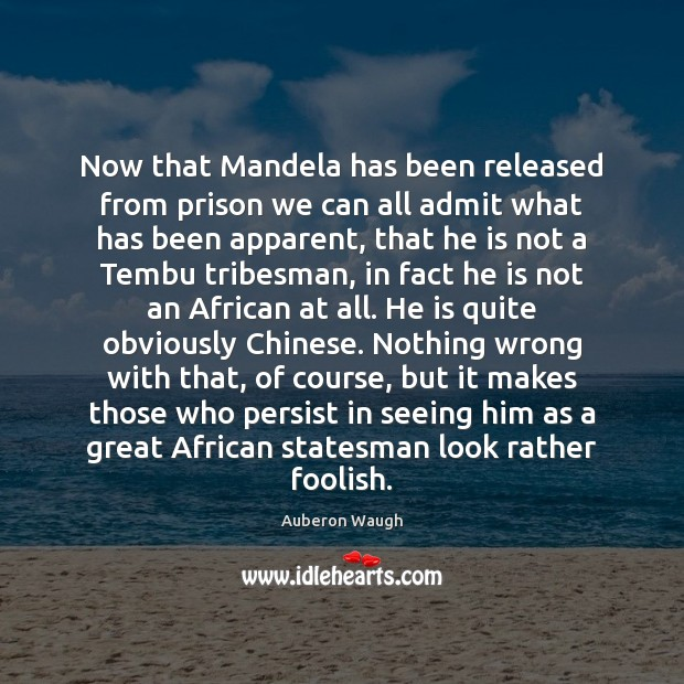 Now that Mandela has been released from prison we can all admit Image