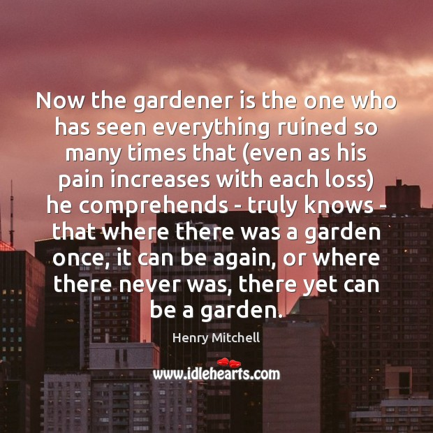 Now the gardener is the one who has seen everything ruined so Henry Mitchell Picture Quote