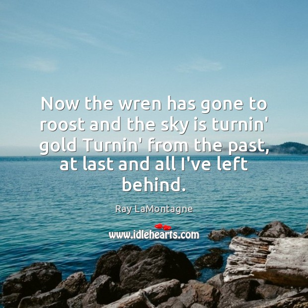 Now the wren has gone to roost and the sky is turnin' Ray LaMontagne Picture Quote