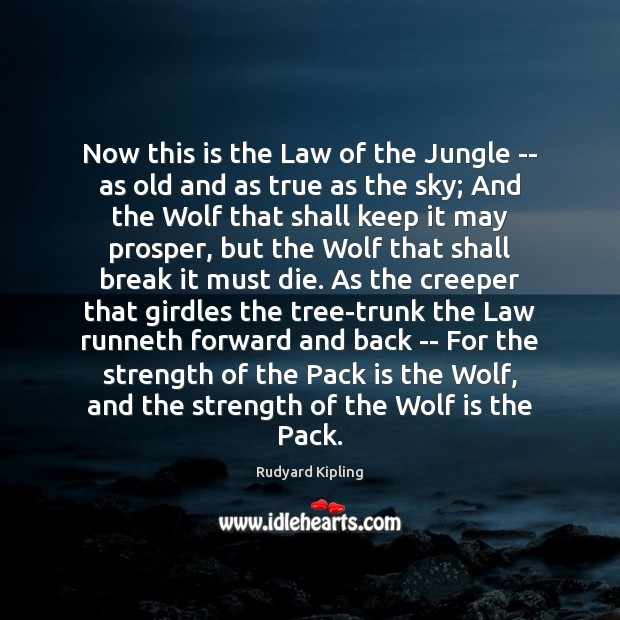 Now this is the Law of the Jungle — as old and Rudyard Kipling Picture Quote