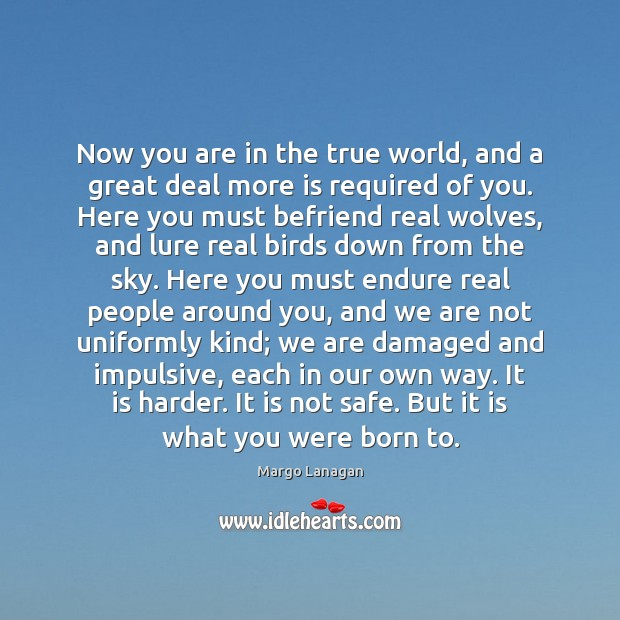 Now you are in the true world, and a great deal more Image