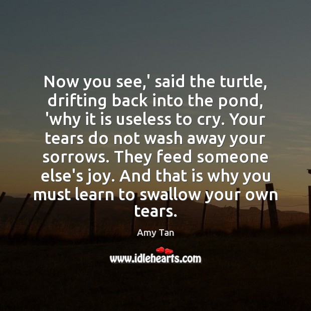 Now you see,' said the turtle, drifting back into the pond, Image