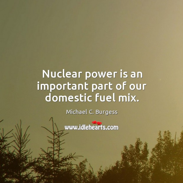 Nuclear power is an important part of our domestic fuel mix. Michael C. Burgess Picture Quote
