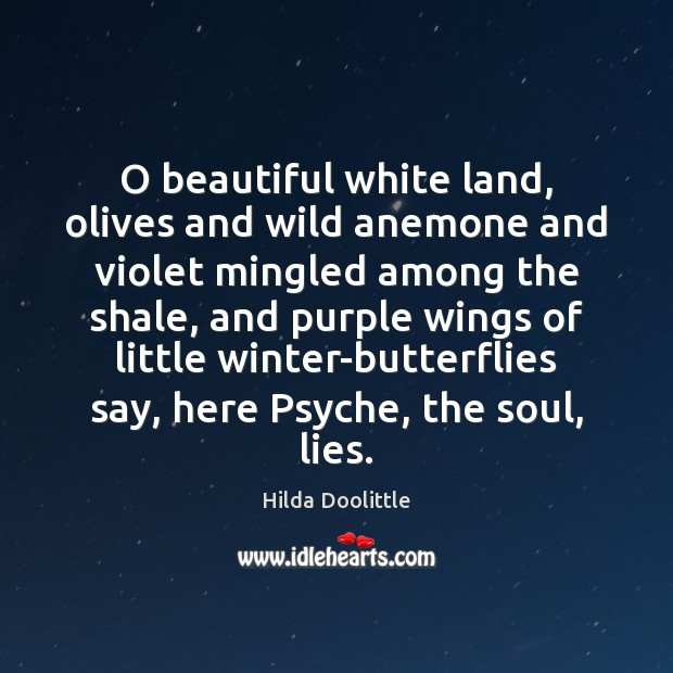 O beautiful white land, olives and wild anemone and violet mingled among Hilda Doolittle Picture Quote