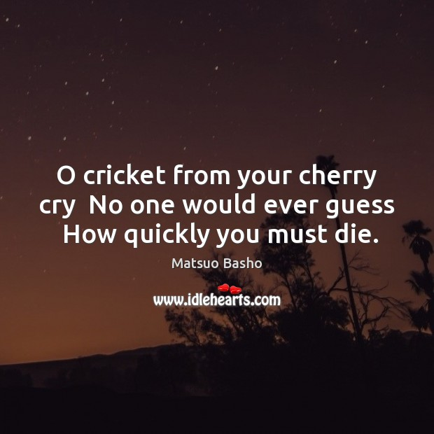 Image, O cricket from your cherry cry  No one would ever guess  How quickly you must die.