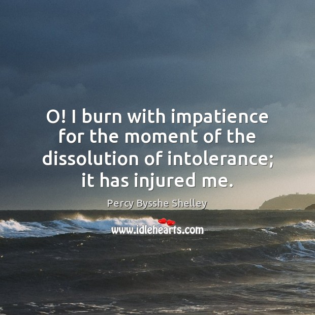 O! I burn with impatience for the moment of the dissolution of Image