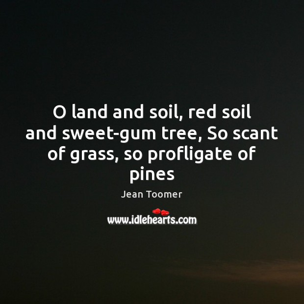 O land and soil, red soil and sweet-gum tree, So scant of grass, so profligate of pines Jean Toomer Picture Quote