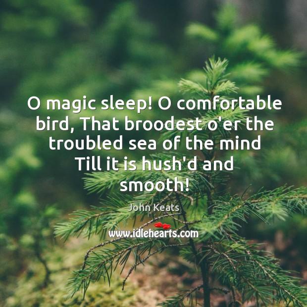 O magic sleep! O comfortable bird, That broodest o'er the troubled sea Image