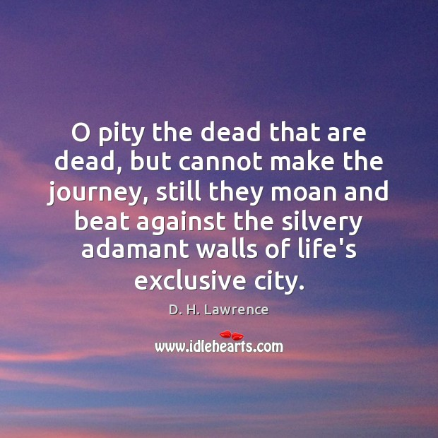 O pity the dead that are dead, but cannot make the journey, D. H. Lawrence Picture Quote
