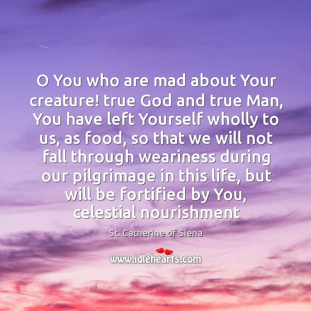 Image, O You who are mad about Your creature! true God and true