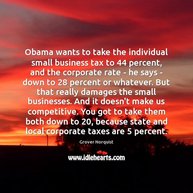 Obama wants to take the individual small business tax to 44 percent, and Grover Norquist Picture Quote