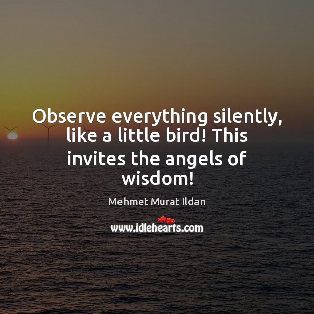 Observe everything silently, like a little bird! This invites the angels of wisdom! Mehmet Murat Ildan Picture Quote