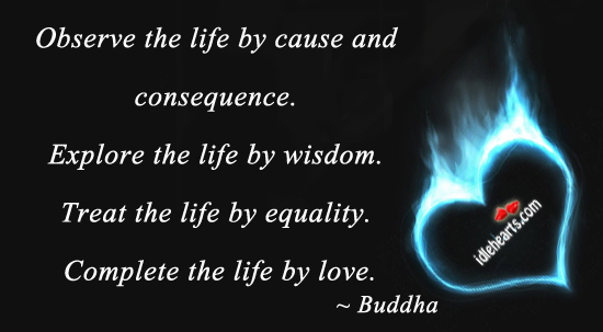Observe the life by cause and consequence. Buddha Picture Quote