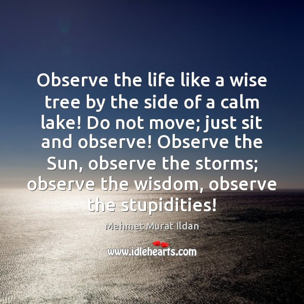 Image, Observe the life like a wise tree by the side of a
