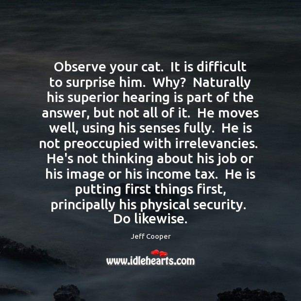 Observe your cat.  It is difficult to surprise him.  Why?  Naturally his Jeff Cooper Picture Quote