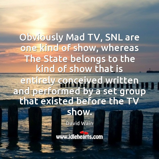 Obviously Mad TV, SNL are one kind of show, whereas The State David Wain Picture Quote