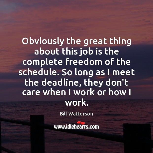 Obviously the great thing about this job is the complete freedom of Bill Watterson Picture Quote