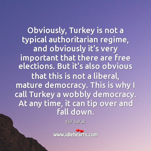 Obviously, Turkey is not a typical authoritarian regime, and obviously it's very Image