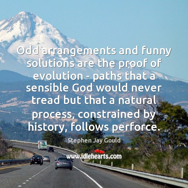 Odd arrangements and funny solutions are the proof of evolution – paths Stephen Jay Gould Picture Quote